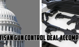 Bipartisan gun control deal accomplished