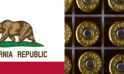 California Passes Ammo Permit Fee