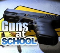 Proposed Bill Would Allow Guns on Wisconsin's School Grounds
